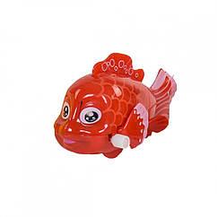 """Заводная игрушка """"Рыбки"""" 675 (Красный)"""