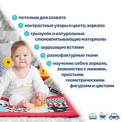 Розвиваючий килимок з підвісними іграшками Macik МС 040501-01