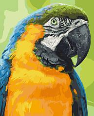 """Картина за номерами. Art Craft """"Папуга Ара"""" 38*50 см 11626-AC"""