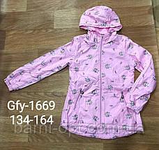 Куртки на флисовой подкладке для девочек, Glo-story, 152/158  рр, фото 2