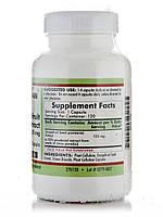 Екстракт насіння грейпфрута 125 мг - гіпоалергенний, Grapefruit Seed Extract 125 mg -Hypoallergenic, Kirkman, фото 2