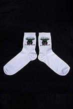 Шкарпетки Without Powers 36-44 White