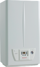 Газовый настенный котел Immergas Nike Star 24 4 Е, дымоходный, двухконтурный