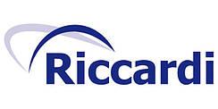 Двери входные Riccardi