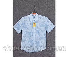 Сорочка підліткова для хлопчика (зріст 128-158) 9/14 років