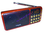 Портативное радио MP3 NEEKA NK-932, фото 1