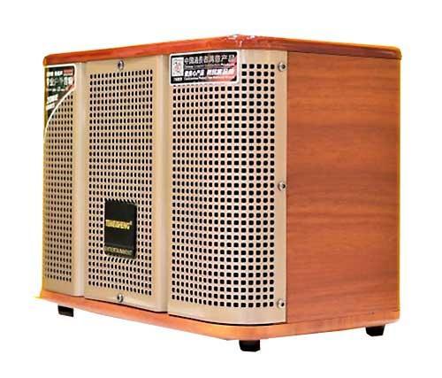 Акустична музична колонка Temeisheng GD06-39 з мікрофонами