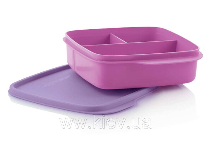 Контейнер «Школьник», фиолетовый, 550мл,  Tupperware