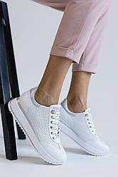 Женские кроссовки кожаные весна/осень белые Carlo Pachini 4505/20-98