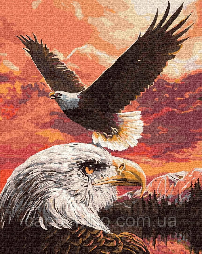 Картина за номерами малювання Політ орлов GX36240 40х50см набір для розпису по цифрам без коробки