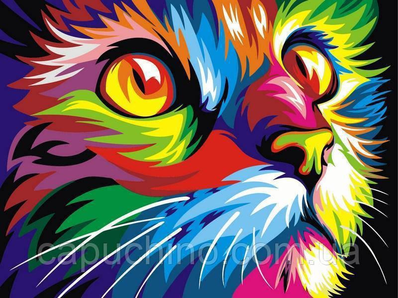 Картина за номерами малювання Babylon NB532 Веселковий кіт 40х50см набір для розпису по цифрам у коробці