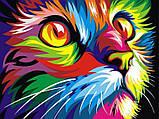 Картина за номерами малювання Babylon NB532 Веселковий кіт 40х50см набір для розпису по цифрам у коробці, фото 4