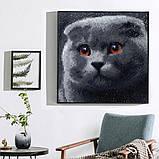 Алмазная мозаика DIY Веслоухий кот 20х20см. Коты. Животные, 16 цветов, квадратные стразы, фото 2
