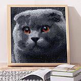 Алмазная мозаика DIY Веслоухий кот 20х20см. Коты. Животные, 16 цветов, квадратные стразы, фото 3