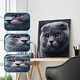 Алмазная мозаика DIY Веслоухий кот 20х20см. Коты. Животные, 16 цветов, квадратные стразы, фото 4