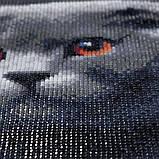 Алмазная мозаика DIY Веслоухий кот 20х20см. Коты. Животные, 16 цветов, квадратные стразы, фото 8
