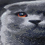 Алмазная мозаика DIY Веслоухий кот 20х20см. Коты. Животные, 16 цветов, квадратные стразы, фото 9