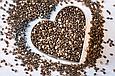 Чиа семена 200г Парагвай, натуральные семена шалфея Испанского, фото 3