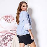 Женская блузка блуза батист + кружево голубого цвета размер: 50-52, 54-56, фото 5