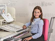 Mealux Winnipeg Multicolor | Дитяча парта стіл зростаюча для навчання, фото 2
