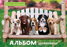 """Альбом """"1 Вересня"""" 20арк. (Д) 130430"""