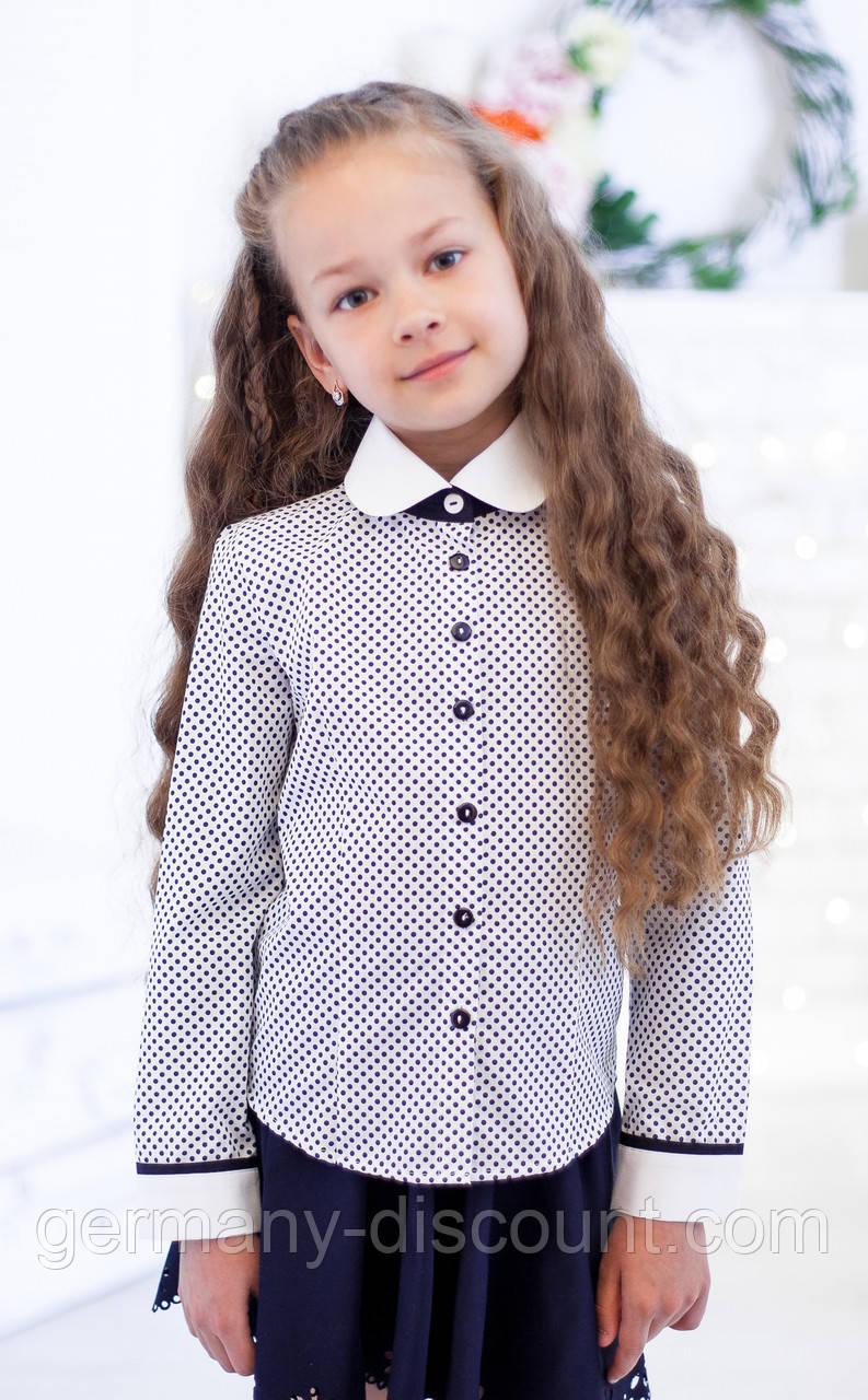 Блузочка шкільна біла в синій горошок мод. 5007д