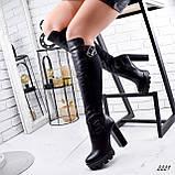 Сапоги женские Dolf черные 2221 кожа ДЕМИ, фото 9