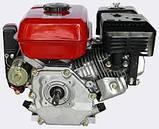 Двигун бензиновий Edon PT-210, фото 2