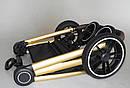 Дитяча коляска темно-сіра Carrello Epica 2в1 золота рама люлька прогулянковий блок сумка дощовик москітна сітка, фото 10