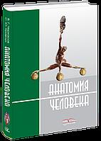 Анатомия человека (на русск. яз.).  Кравчук С. Ю. Черкасов В. Г.