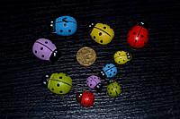 Декоративные наклейки, Божья коровка разноцветная, 1.2см, фото 1