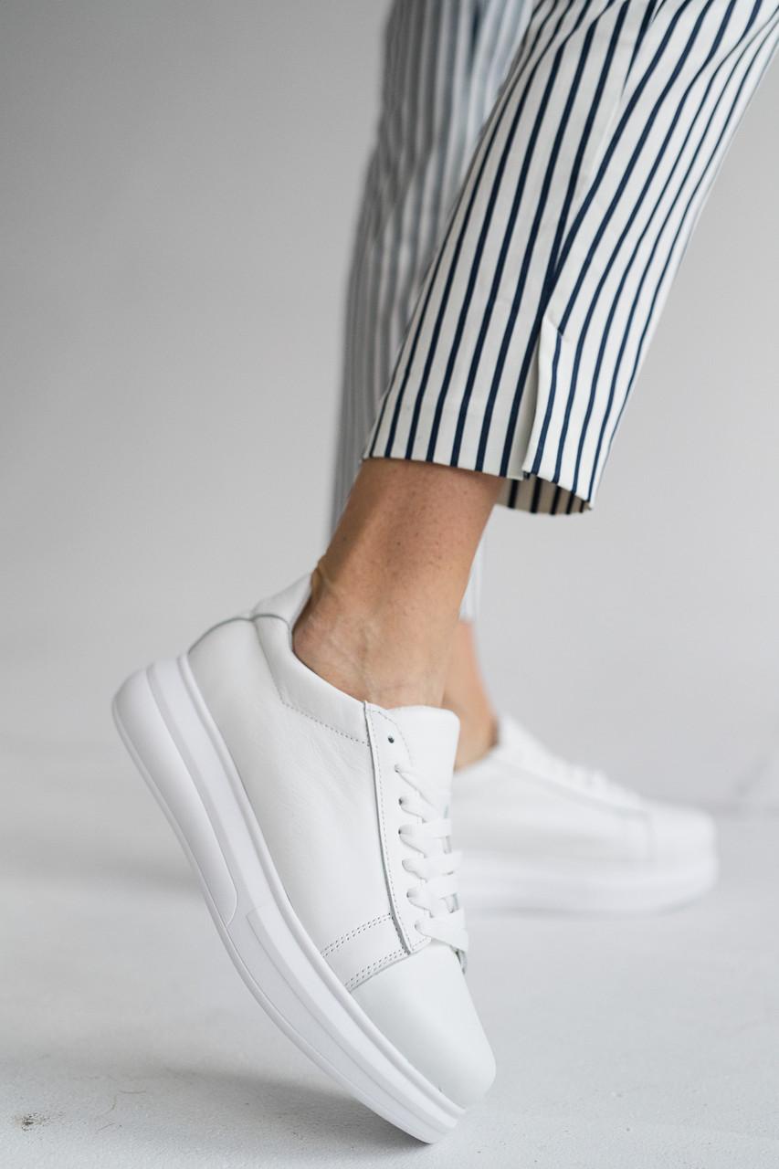 Жіночі кросівки шкіряні весна/осінь білі Lions Гас Los Angelos