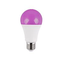 Світлодіодна Фитолампа Luxel FLX-060 10W E27 A60 (FLX-060)