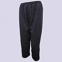 Бриджі жіночі трикотажні в горох 96-100 розмір, чорні 20013202