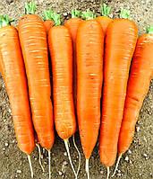 КОЛТАН F1 - насіння моркви Нантес/Флакке (1,6-1,8) 100 000 насінин, Nunhems
