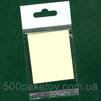 Пакет с еврослотом 30х8cм +кл/л