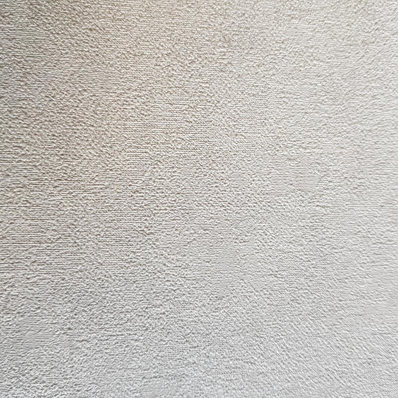Шпалери метрові вінілові на флізеліновій основі Rasch Raymond під штукатурку структурні білі сріблясті