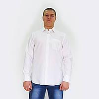 Рубашка мужская белая. Длинный рукав,классический силуэт,рельефы спереди.РазмS-XXL. Davanti.