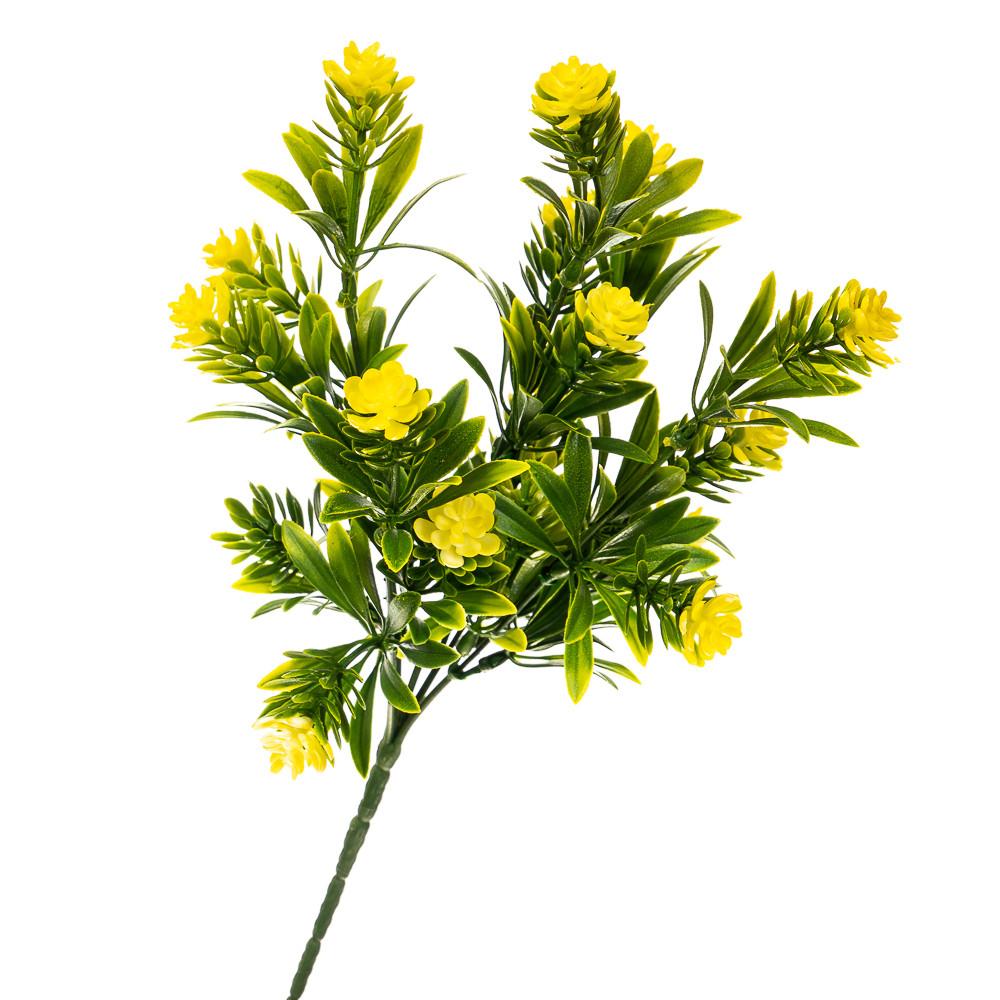 Квітка Олеандр жовтий