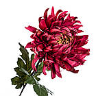Хризантема бордо 82 см, фото 2