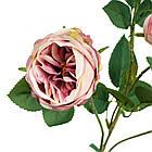 Ветка розы, пудровая, фото 2