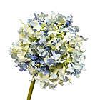 "Цветок  ""Гортензия шаровидная"" синяя, фото 3"