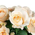 Букет кремових троянд 48см, фото 2