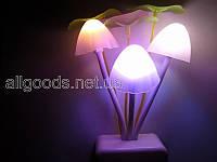 Светильник ночник Аватар. Лампа ночная. EU