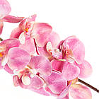 Орхидея (97 см) (Силикон), фото 2