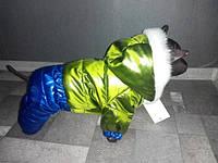 Зимний комбинезон для собак Монклер Зеленый оптом и в розницу.