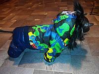 Зимний комбинезон для собак Камуфляж с цветами оптом и в розницу.