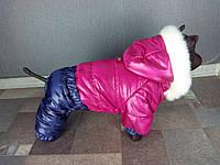 Зимний комбинезон для собак Монклер Малиновый оптом и в розницу.