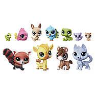 Littlest Pet Shop Маленький зоомагазин набор 11 зверюшек A Colorful Bunch, фото 2