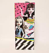 "Модный Кейс Monster High и кукла Дракулаура Fashion Doll Case "" Draculaura"", фото 3"